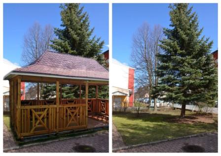 Budowa Altany Drewnianej Dla Bezpieczeństwa I Komfortu Uczniów